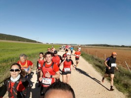 correores trail requena 2016-26
