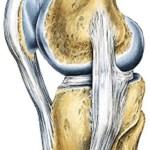 13 dicas úteis para proteger os joelhos