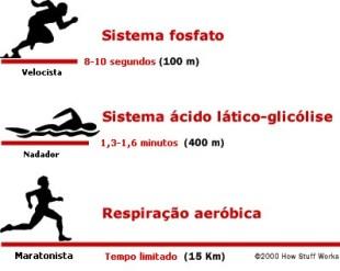 acido latico