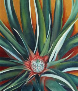 Georgia O'Keeffe Pineapple Bud, 1939 Oil on canvas, 19 x 16 in. Private collection