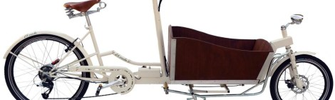 cargo-bike-pedalata-assistita-el-ciclo-cariola