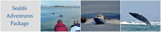 Corriemar House Accommodation Oban Sealife Adventures Offer