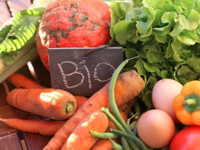 Cibo bio, cresce il mercato europeo: 37 mld nel 2017