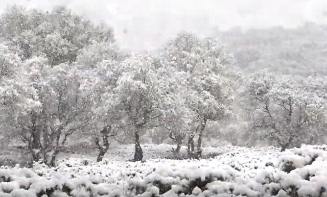 immagine 1 articolo neve in scozia fino in collina freddo meteo di maggio