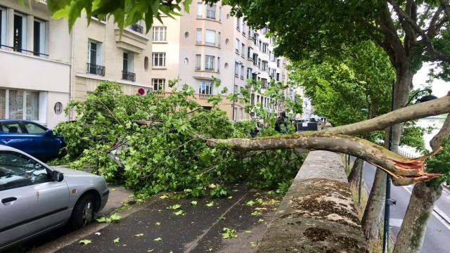 immagine 1 articolo tempesta francia meteo record vento
