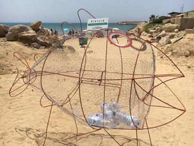 Sulle spiagge della Sicilia arrivano i 'pesci mangiaplastica'