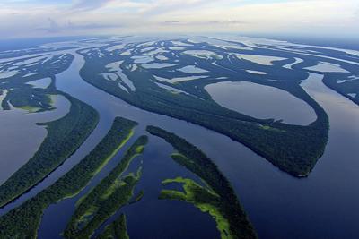 Amazzonia, lo speciale su National Geographic Wild