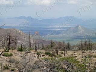 Chiricahua Mountains in southeastern Arizona