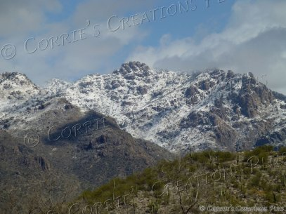 Snowfall in the Catalina Mountains