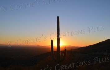 This photo was taken at sundown from the Babad Do'Ag vista point in the Catalina Mountain foothills in southeastern Arizona.