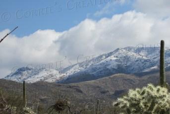 A rare snowfall graces the Rincon Mountains east of Tucson.
