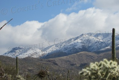 A rare snowfall graces the Rincon Mountains east of Tucson.