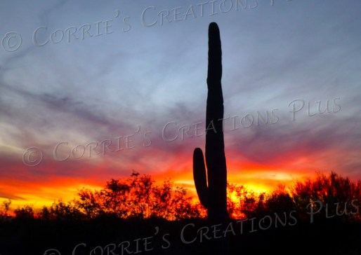 A beautiful, wispy sunset; taken from Catalina Highway and Harrison Road in Tucson