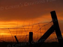 Beautiful fencepost sunset in southeastern Nebraska