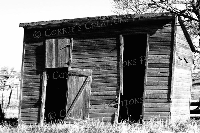 Ever wonder what was stored in this shack in the past?