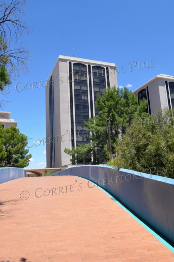 The walkway and some buildings in downtown Tucson