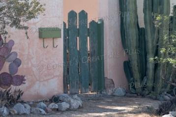Taken in midtown in Tucson
