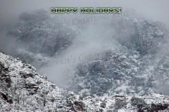 Happy Holidays from southeastern Arizona