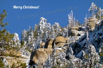 Merry Christmas from the snowy Catalina Mountains