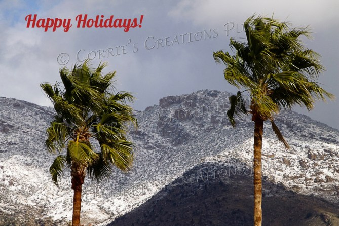 Palm trees swaying in a winter wind in the Catalina Mountain foothills