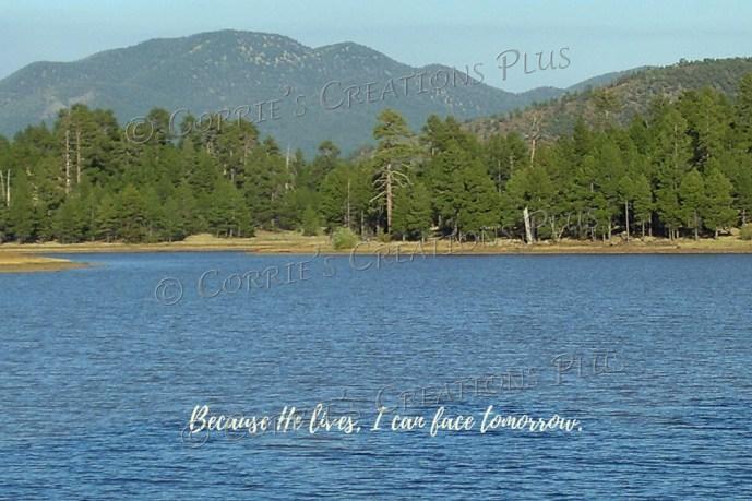 Serene lake in northern Arizona near Flagstaff