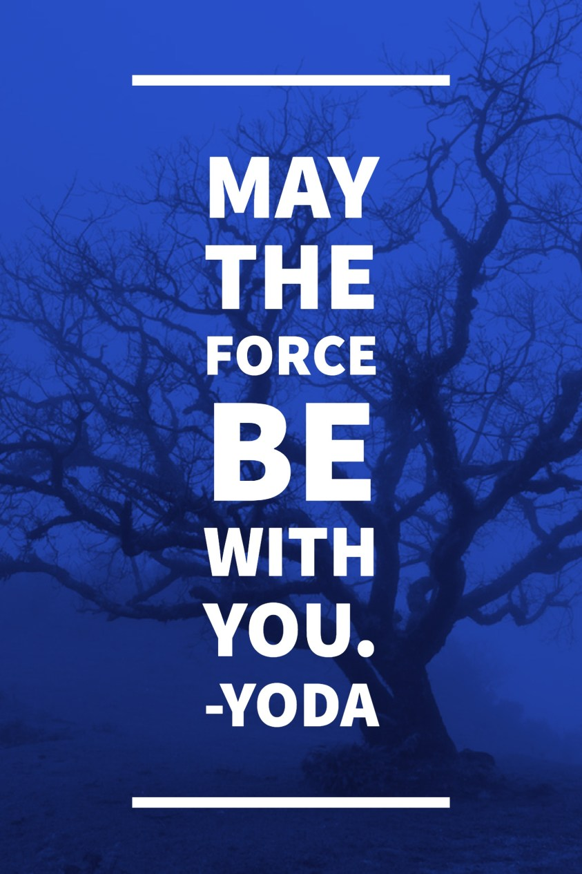 May the Force be with you.-Yoda