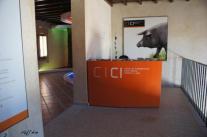 Centro de Interpretación del Cerdo Ibérico - CICI