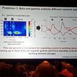 beta and gamma interplay allows the brain to juggle multiple stimuli