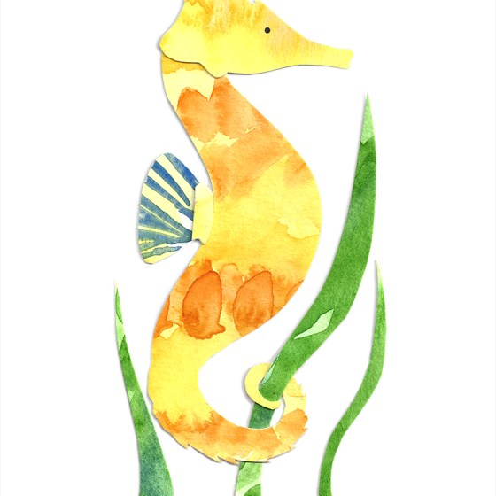 Seahorse Assembled Watercolor Painting by Cortney North
