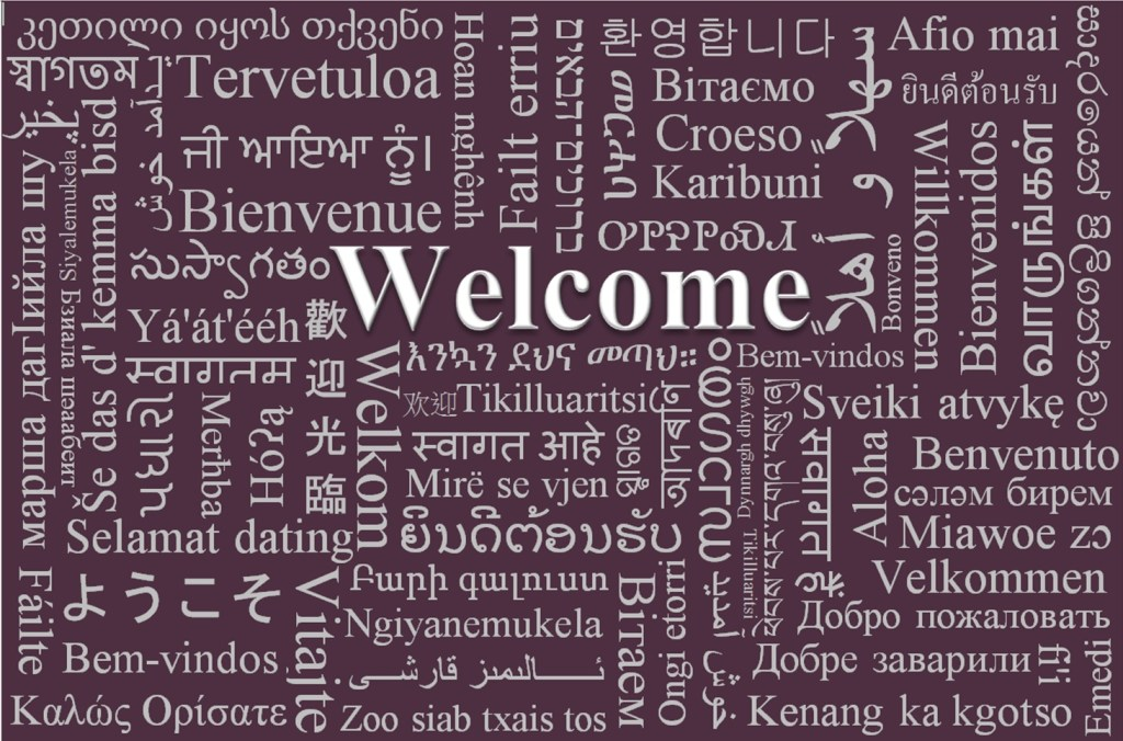 Welcome CFM languages