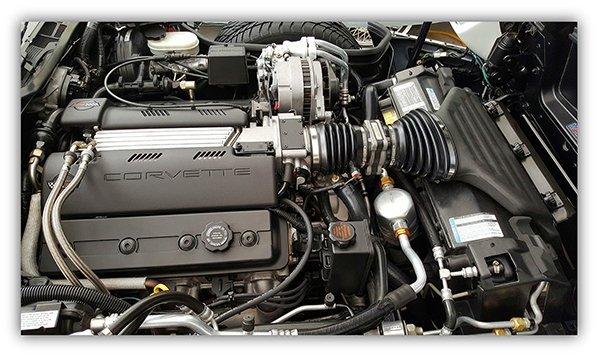 Ed Nieves 1995 Corvette Engine