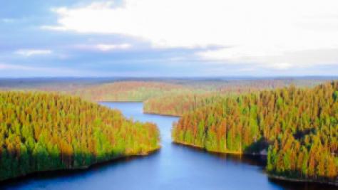 Repovesi National Park in early morning summer sun, in Kouvola, Finland https://commons.wikimedia.org/wiki/File:Repoveden_Kansallispuisto_Kesayonauringossa.jpg