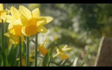 Screen Shot 2016-04-21 at 14.51.57