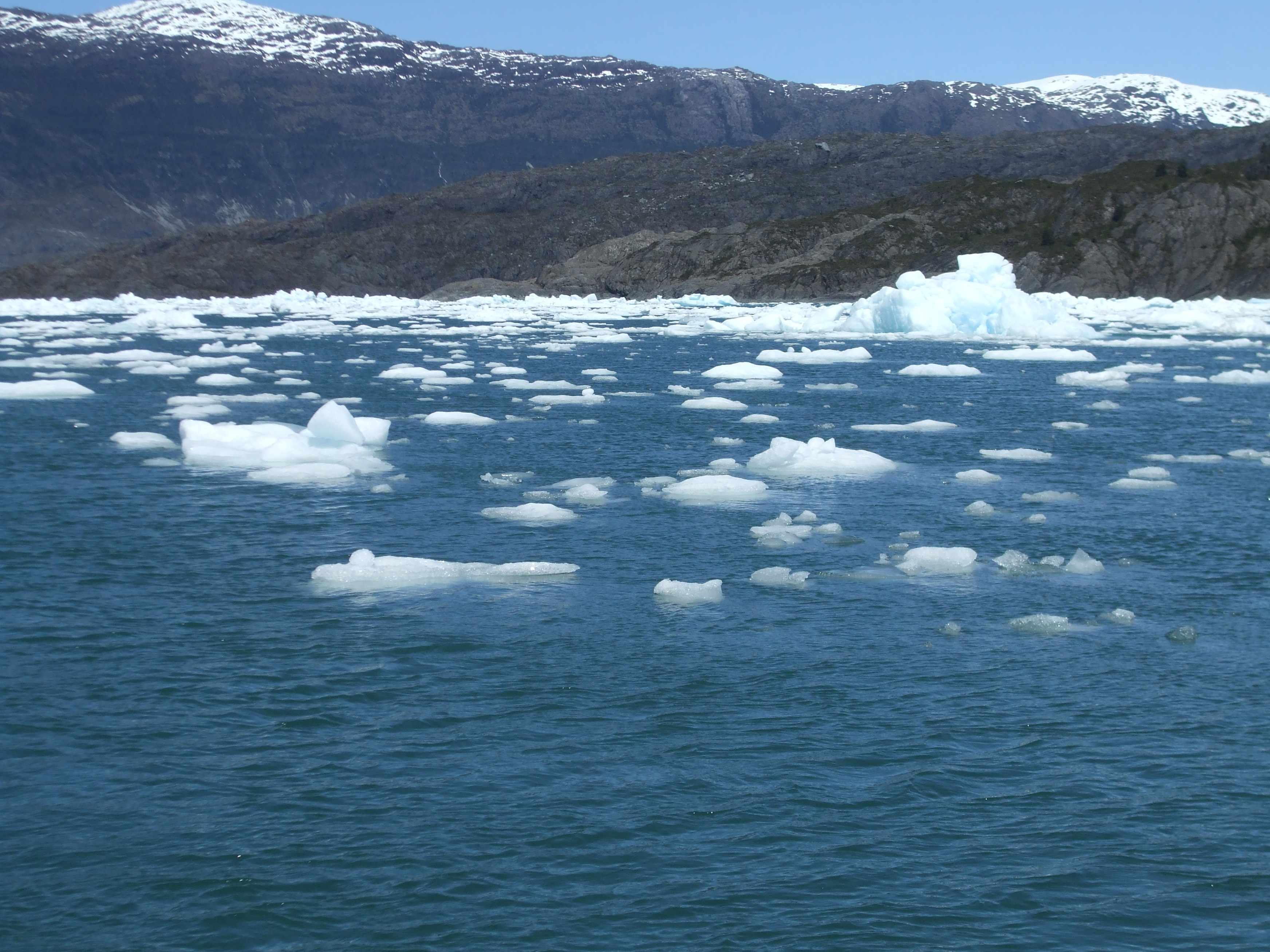 4 Icebergs from the Jorge Montt glacier