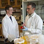 Associate Professor of Medicinal Chemistry and Chemical Technology Michael Pollastri with chemistry major Charlie Hoyt