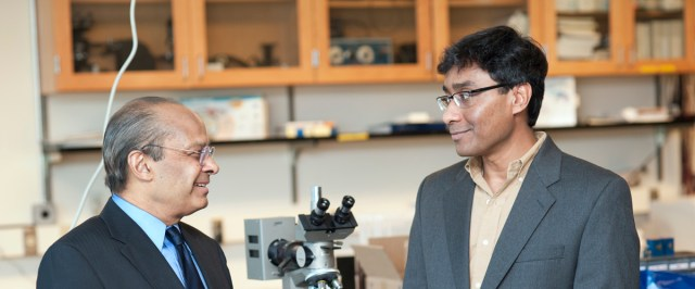Srinivas Sridhar, left, the Arts and Sciences Distinguished Professor of Physics and director of Northeastern's Electronic Materials Research Institute, and Swastik Kar, an assistant professor of physics in the College of Science. File photo