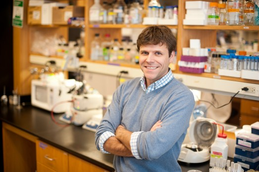 Prof. James Monaghan researches ovary regeneration