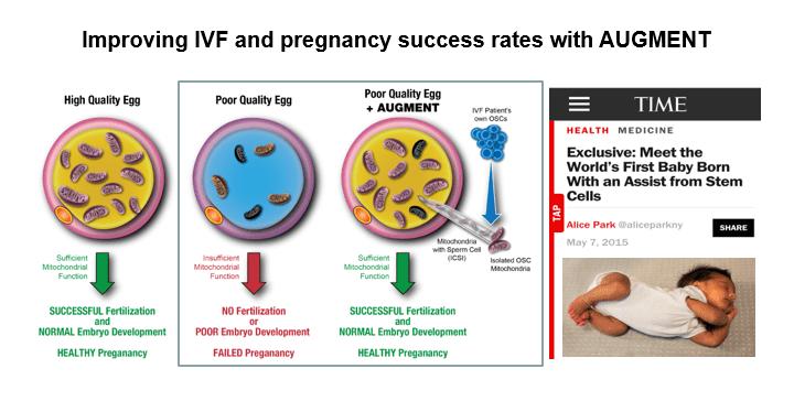 NIH grant helps scientist revolutionize fertility research