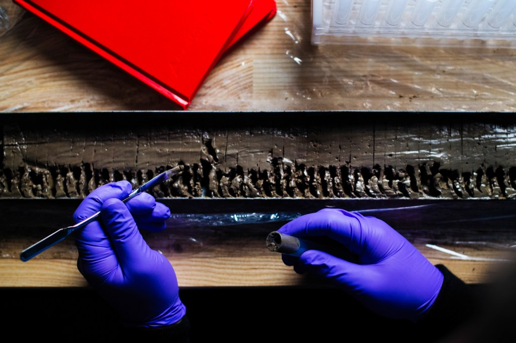 Two gloved hands, one holding a tool, work at a lab bench on a silt sample.