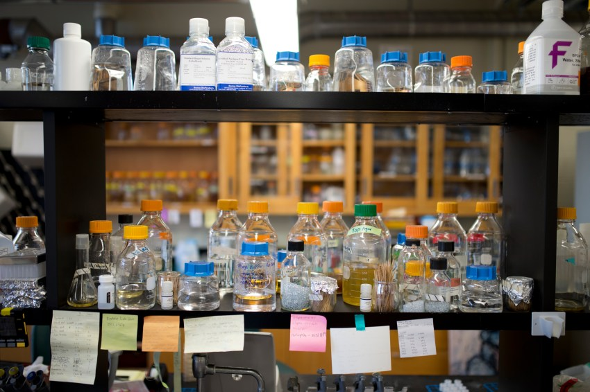 Picture of chemicals displayed on a shelf in a biology lab.