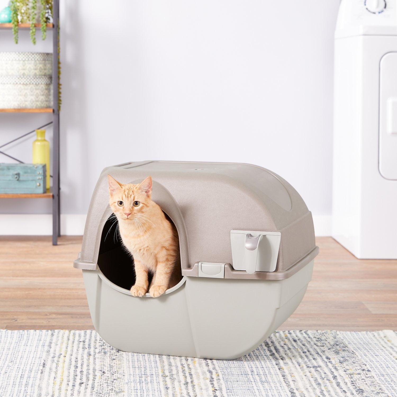 Mejores areneros autolimpiables para gatos
