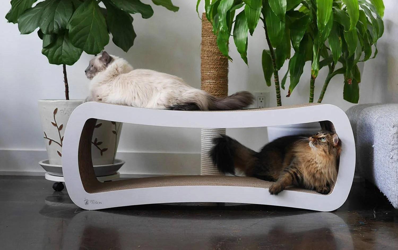 Rascadores de cartón para gatos: los mejores de 2020 (guía) 1