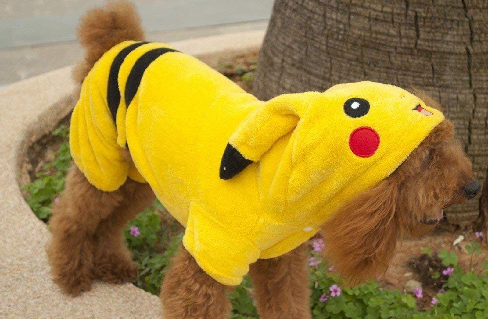 Los mejores disfraces de Pokémon para perros en 2020 1