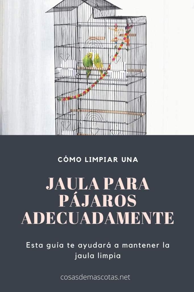 Cómo limpiar una jaula para pájaros adecuadamente 3