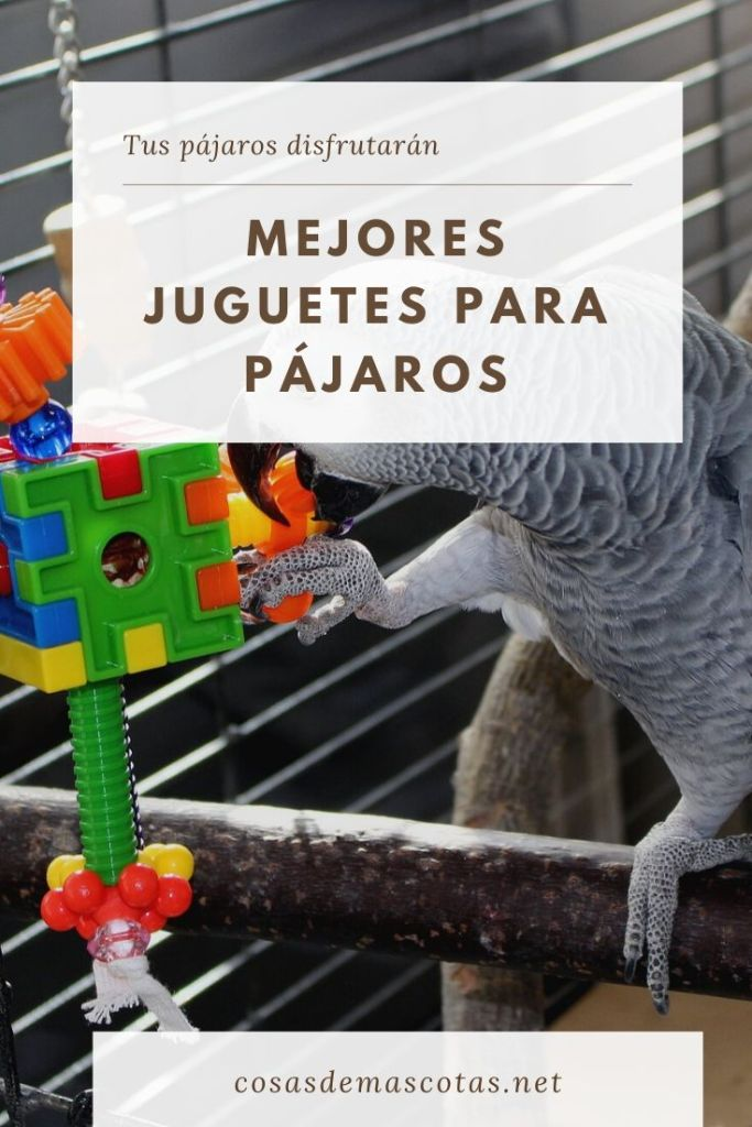 mejores juguetes para pájaros