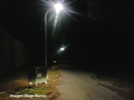 enebro-con-luz