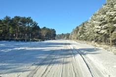 carretera_navalperal-5