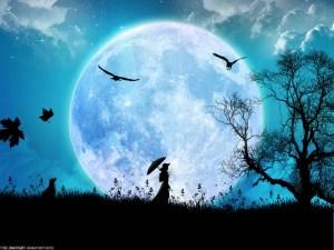 luna_llena-1024x768