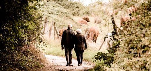 El amor en la madurez - Ricardo Ruiz de la Sierra