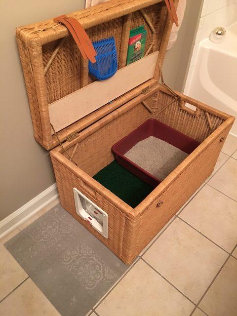 litter box trunk